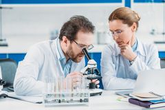 Portrait of scientific researchers in white coats working together at workplace with microscope. In laboratory royalty free stock photo