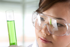 Portrait of a scientist analyzing a solution. Stock Photography