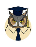 Portrait of the scientist eagle owl. Vector portrait of the scientist eagle owl Stock Photo