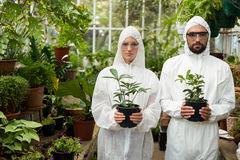 Portrait of scientists in clean suit holding potted plants. Portrait of male and female scientists in clean suit holding potted plants at greenhouse Royalty Free Stock Photos