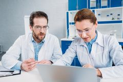 Portrait of scientists in lab coats and eyeglasses working on laptop together at workplace. In lab royalty free stock photos