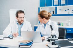 Portrait of scientists in lab coats and eyeglasses working together at workplace with laptop. In lab royalty free stock image