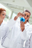 Portrait of scientists looking a flask Stock Photos