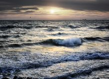 Portrait of sea wave on sunset. Sea wave and sunset with birds and ships at background Stock Photos