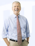 Portrait Of A Senior Businessman Smiling Royalty Free Stock Image