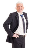 Portrait of a Senior Businessman Royalty Free Stock Photo