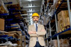 Portrait of senior businessman in suit with helmet in a warehous Royalty Free Stock Photography