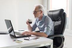Portrait of senior businessman working on laptop, hard light Stock Photo