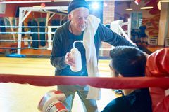 Senior Coach Motivating Fighter. Portrait of senior coach holding water bottle  talking to young professional fighter in corner of boxing ring giving pep talk Royalty Free Stock Photo