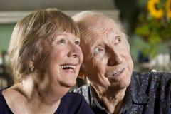 Portrait of Senior Couple royalty free stock photos