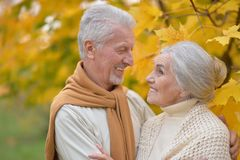 Portrait of senior couple in autumn park stock image