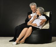 Portrait of a senior couple Stock Images