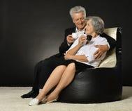 Portrait of a senior couple Stock Images
