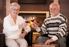 Portrait of senior couple clinking wine glasses Royalty Free Stock Photo