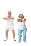 Portrait of Senior Couple Royalty Free Stock Image