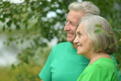 Portrait of senior couple in forest Royalty Free Stock Photography