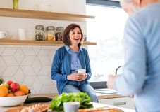 A portrait of senior couple indoors at home, talking. A portrait of happy senior couple with coffee indoors at home, talking royalty free stock photography