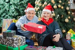 Portrait Of Senior Couple Offering Present In Royalty Free Stock Photos