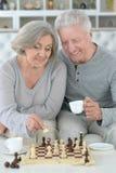 Portrait of senior couple playing chess stock photo