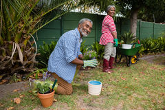 Portrait of senior couple working in backyard Royalty Free Stock Images