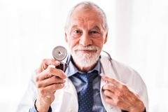 Portrait of a senior doctor in office. stock photos