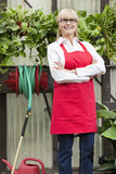 Portrait of a senior gardener with arms crossed in greenhouse Royalty Free Stock Photo