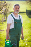 Portrait of a senior gardener in his garden Stock Images