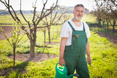 Portrait of a senior gardener in his garden Royalty Free Stock Photos
