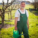 Portrait of a senior gardener in his garden Stock Photos