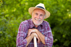 Portrait of senior gardener with straw hat. In late spring stock photography