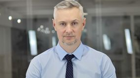 Portrait of Senior Grey Hair Businessman in Office stock video