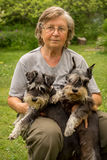 Portrait. Senior happy woman in glasses and two black and silver miniature schnauzer dogs in a garden Stock Photography