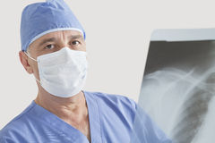 Portrait of senior male surgeon examining x-ray over gray background Royalty Free Stock Photos
