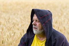 Portrait of a senior man in cowl against wheat field Royalty Free Stock Photo