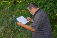 Portrait of senior man doing sketch Royalty Free Stock Photography
