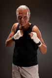 Portrait of a senior man in fighting stance Stock Photos