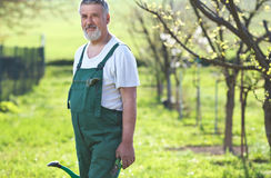 Portrait of a senior man gardening Stock Photography