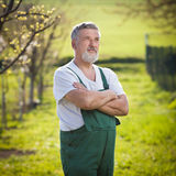 Portrait of a senior man gardening in his garden Stock Photos