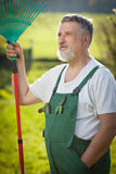 Portrait of a senior man gardening in his garden Royalty Free Stock Image
