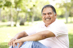 Portrait Of Senior Man In Park Stock Photos