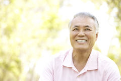 Portrait Of Senior Man In Park Royalty Free Stock Photo