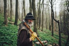 Portrait of a senior man walking in the forest. A portrait of an elderly man in the forest royalty free stock image