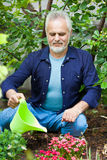 Portrait of senior man watering flowers Royalty Free Stock Photo