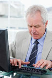 Portrait of a senior manager using a computer Stock Photos