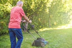 Portrait of senior old man using lawn mower in the garden on summer day stock image