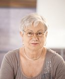 Portrait of senior teacher Royalty Free Stock Photos