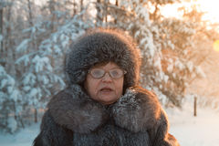 Portrait of senior woman fur coat and hat standing in cold winter snow covered forest. Close up Stock Images