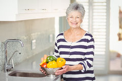 Portrait of senior woman holding colander with vegetables Royalty Free Stock Images