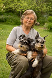 Portrait. Senior woman hugs her two black and silver miniature schnauzer dogs in countryside Royalty Free Stock Image