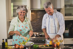 Portrait of senior woman with man preparing food in kitchen Royalty Free Stock Photography